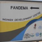 Fandema-3